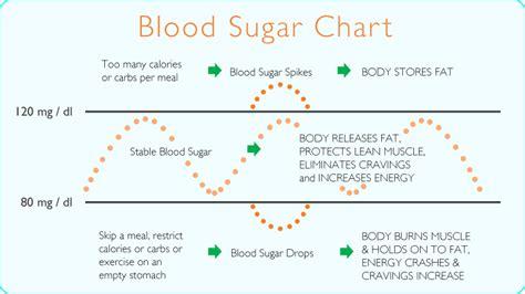 healthy fats blood sugar the secret to permanent weight loss macdonald