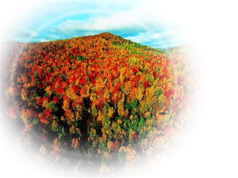 imagenes png naturaleza im 225 genes png y mucho m 225 s paisajes y flores png