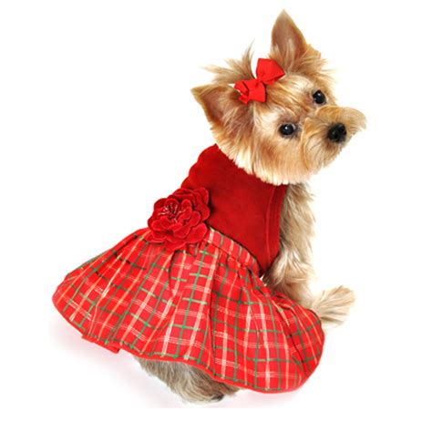 puppy dresses plaid with velvet dress at baxterboo