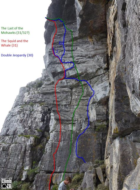 table mountain climbing pin climbing ladder leaning in midair pe0058206