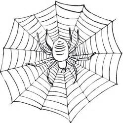 web coloring pages spider web coloring pages beautiful scenery photography