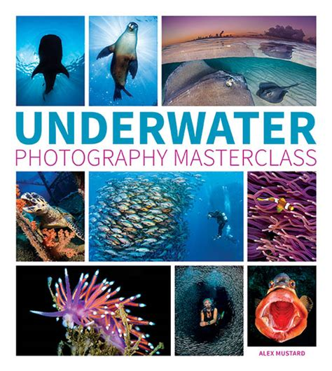 underwater photography book book review underwater photography masterclass by dr