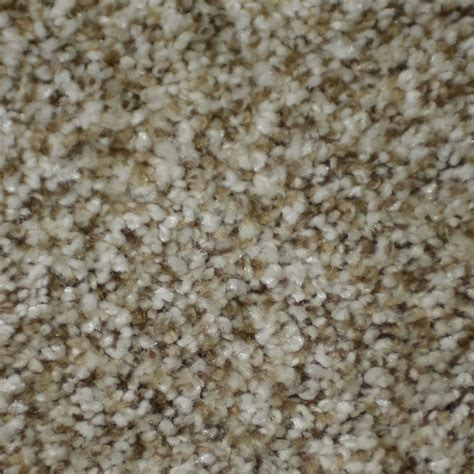 stainmaster rugs shop stainmaster essentials boutique houdini frieze indoor carpet at lowes