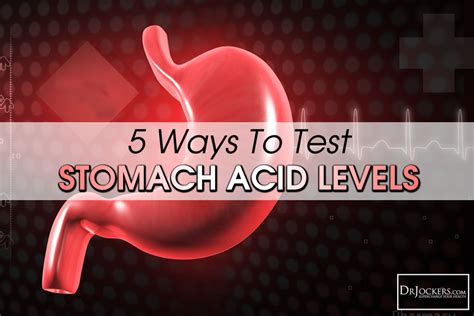test your level 5 ways to test your stomach acid levels drjockers
