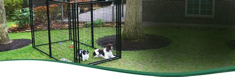 diy outdoor kennel kennel roof breeds picture