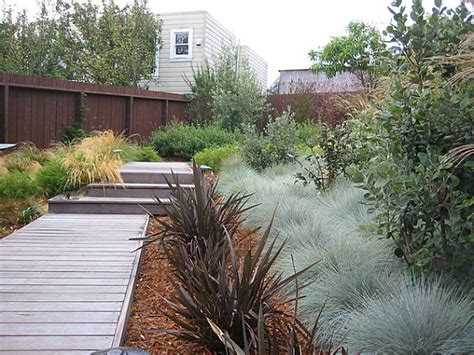 modern landscaping with native plants decoist