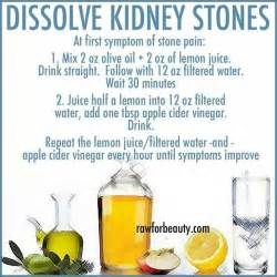 home remedies for kidney stones 25 best ideas about kidney stones on kidney
