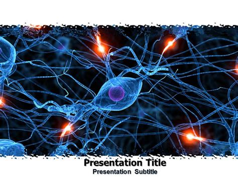 Powerpoint Templates Free Nervous System | nervous system powerpoint ppt templates powerpoint