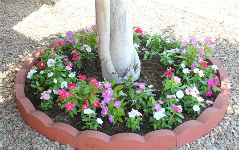flower beds around trees 12 amazing ideas for flower beds around trees