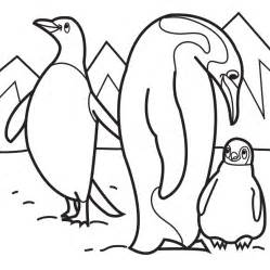 penguins coloring pages download print free