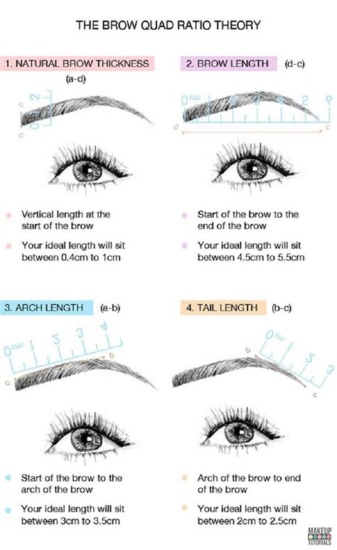 how to shape eyebrows makeup tutorials
