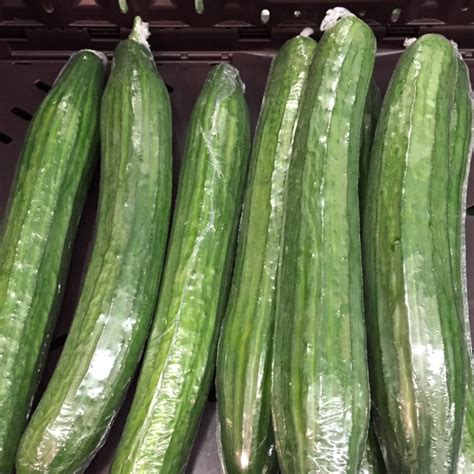 hot house cucumbers hot house cucumbers information recipes and facts