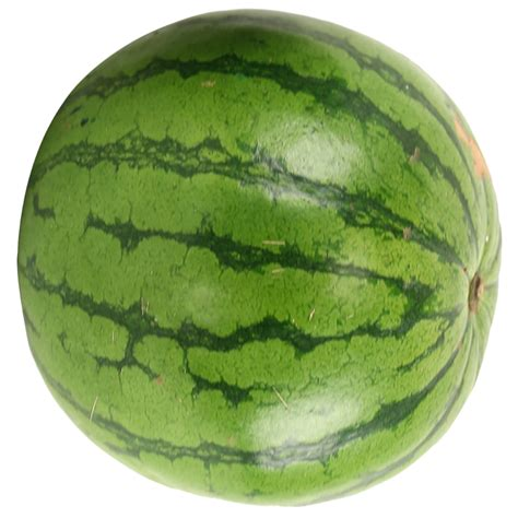 watermelon png top 36 watermelon png transparent images free
