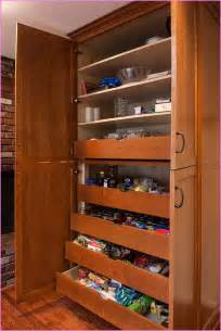 slide out kitchen cabinets pantry cabinet pull out system home design ideas