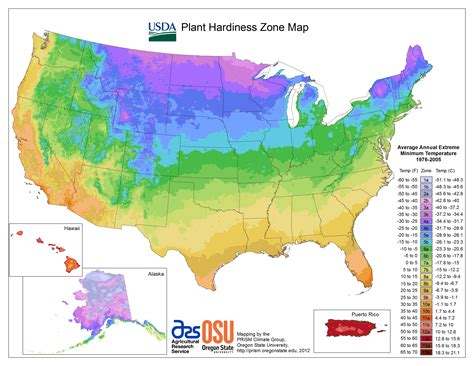 zone map for gardening view maps usda plant hardiness zone map