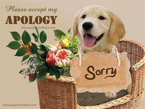 My Apologies by Sorry Images Sorry Cards Sorry Pics