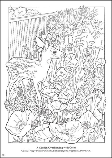 free coloring pages of flower gardening