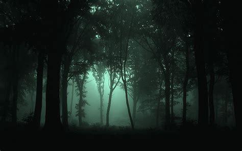 imagenes de paisajes oscuros goticos paisajes oscuro bosque de niebla fondos de pantalla gratis