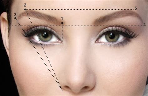 187 eyebrows tips and tricks for tattooing and everyday wear