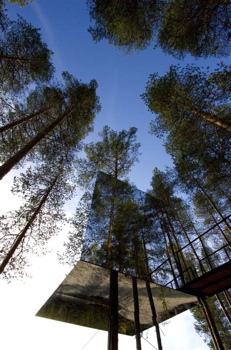trees around the world slide world s coolest treehouse hotels photos huffpost