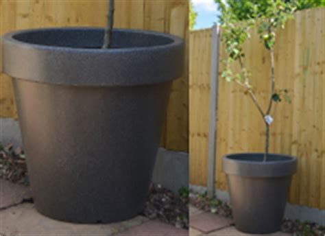 Large Planters For Trees Uk by Stylish Garden Planters For All Garden Types And