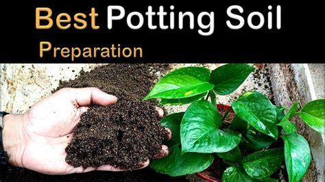 potting soil mix  indoor plants youtube