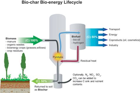 interested in hearing more about biochar and cop21 read albert bates climate change and biochar international 100 images