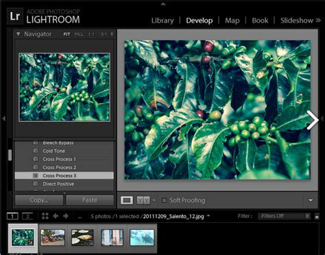 lightroom 5 6 full version download adobe photoshop lightroom 5 6 full version all about