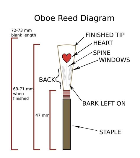 oboe diagram reed uab reed society