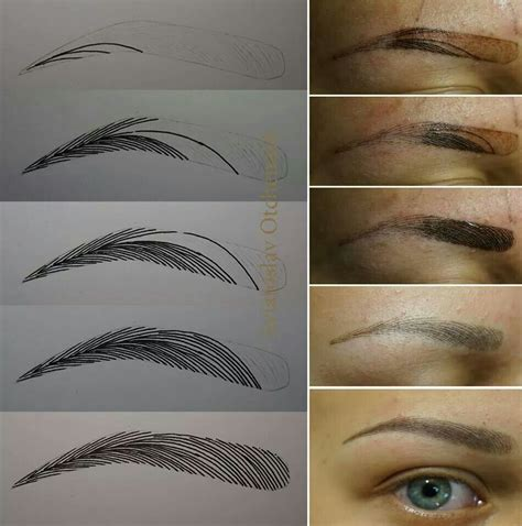 tattoo eyebrows training 1000 images about microblading on pinterest eyebrow