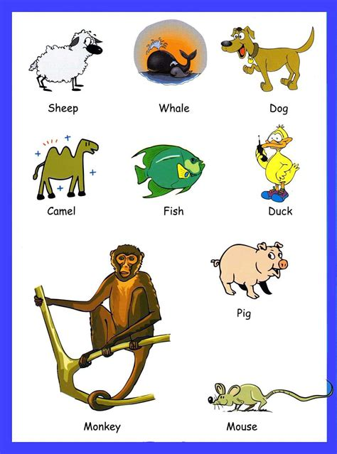 for kindergarteners animals vocabulary for