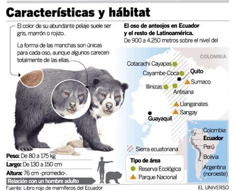 cadenas hoteleras de origen peruano ursidae informaci 211 n fauna y ecosistema