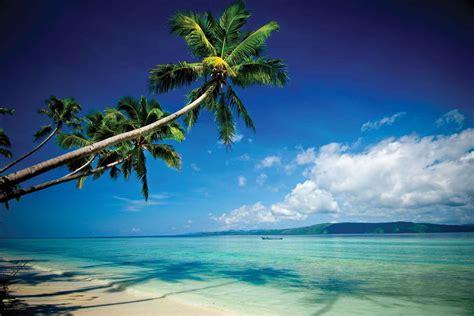 kri eco resort  raja ampat indonesia scuba diving