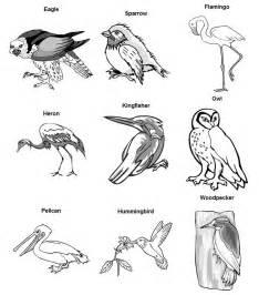 predator and prey worksheet abitlikethis