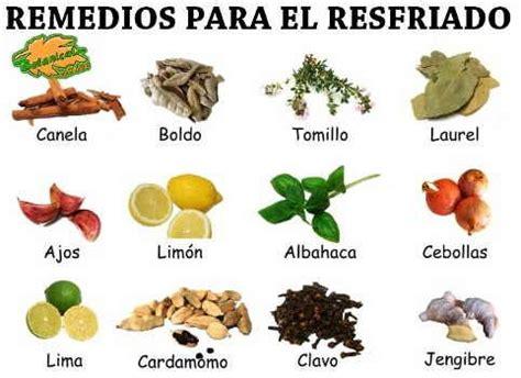 alimentos buenos para el resfriado remedios con plantas medicinales para curar el resfriado