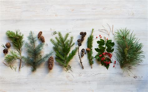 Guest Bedroom Office - all natural christmas decor