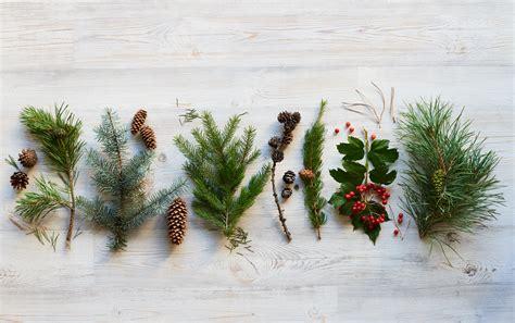 Your Organic Bedroom all natural christmas decor