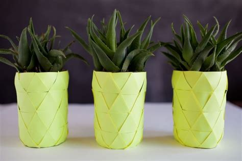 Pineapple Planter by 3 Refreshing Summer Themes