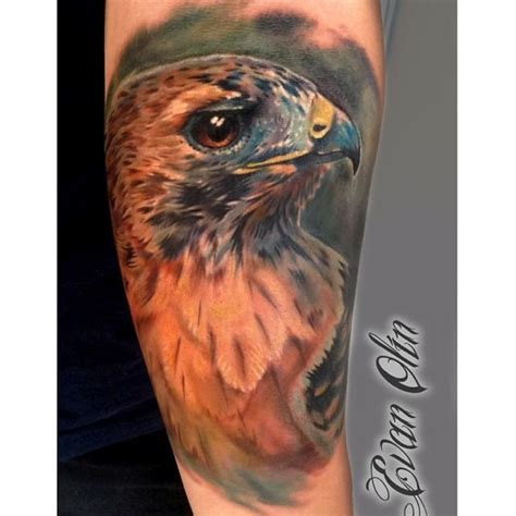 hawks tattoo color realistic hawk by evan olin tattoos