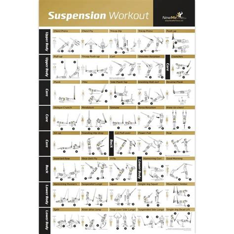 laminated trx suspension exercise poster strength