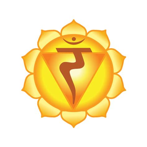 solar plexus chakra location location of bladder and liver uterus and liver location