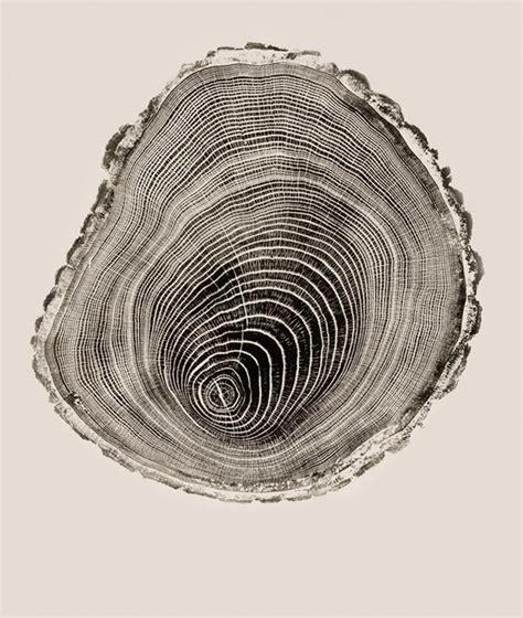 experiment design la gi tranh khắc gỗ l 224 g 236