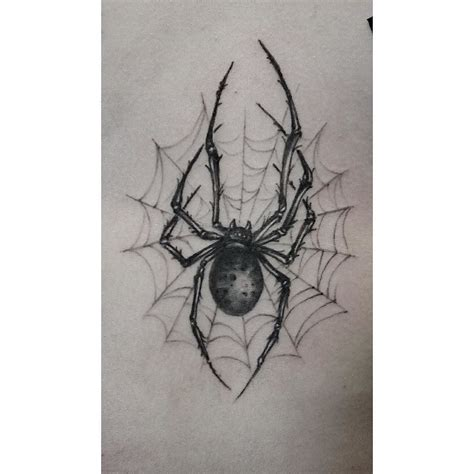spider and web tattoo designs spider web tattoos spider web