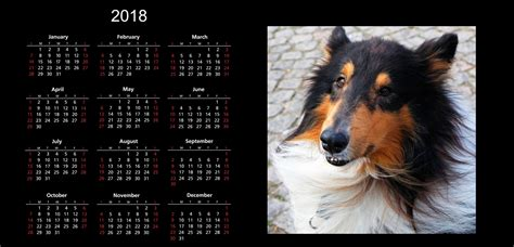 Calendar 2018 Dogs 2018 Calendar Free Stock Photo Domain Pictures