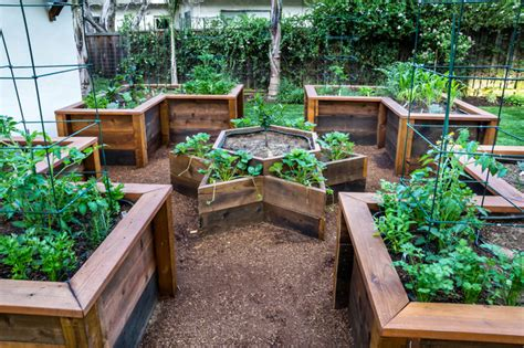 raised garden beds design raised bed vegetable garden traditional landscape