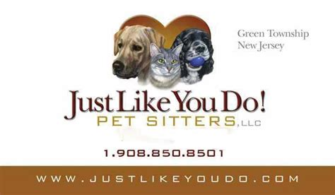 how much to pay a house sitter dog sitter how much to pay a house sitter pet sitter hackettstown nj