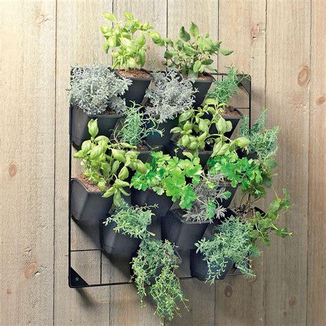 Vertical Wall Garden The Green Head Vertical Wall Garden Plants