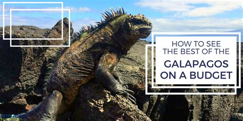 the best cities to visit on a budget big city small budget how to see the best of the galapagos on a budget big