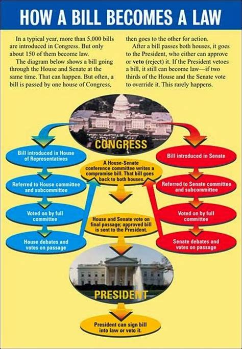 how a bill becomes a flowchart for liberty pac how a bill becomes a