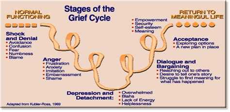 Outline 7 Potential Stages Of Loss And Grief by The Cycles Of Grief Echoed Chaos